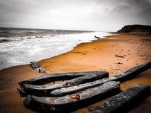 Радиоактивный пляж стоковые изображения