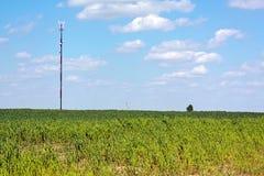 радиосвязи станции антенны передвижные Стоковое Фото
