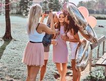 Радостные подруги сфотографированы совместно на партии пикника внешней Сцена праздновать день рождения на внешнем стоковая фотография rf