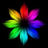 радуга абстрактного цветка футуристическая Стоковое Изображение