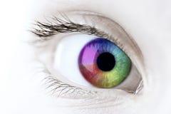 радуга глаза крупного плана Стоковые Фото