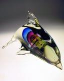 радуга дельфина стоковые фотографии rf