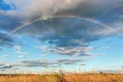 Радуга над полем, ландшафтом лета Стоковое Изображение RF