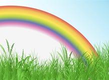 радуга поля Стоковая Фотография