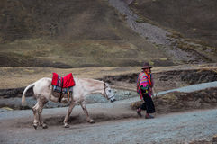 РАДУГА MOUNTAINES, ПЕРУ - 8-ОЕ ОКТЯБРЯ 2016: Родной перуанский человек нося традиционные одежды и шляпу с его лошадью идет горист Стоковое фото RF