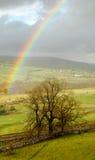 радуга yorkshire ландшафта участков земли Стоковое Изображение