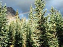 Радуги над горами Стоковое Фото