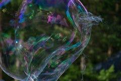 Радужные большие пузыри мыла на фоне леса стоковые изображения rf