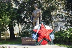 разбейте воиска kiev изображений истории больше моей звезды ww2 воина портфолио красной reenacting советской Стоковые Фото
