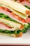 разбейте свежий сандвич еды Стоковые Изображения