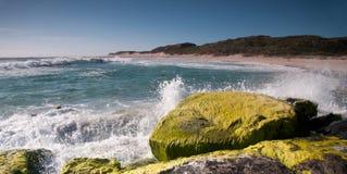 Разбивать развевает на этап западная Австралия серферов Стоковые Изображения RF
