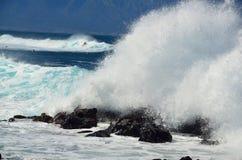 Разбивая волны и серферы стоковая фотография rf