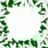 разбивочные цветы состоят льда рамки краев контраста зима текстуры снежка картин холодного низкая Стоковое Фото