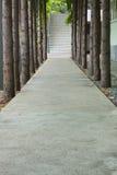 разбивочный вал тротуара Стоковые Фотографии RF