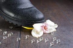 Разбили идея чувств с цветком и стеклом орхидеи клокочет стоковое изображение