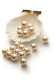 Белые перлы в seashell Стоковая Фотография