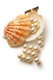 Белые перлы в seashell Стоковые Фото