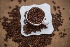 Разбрасывать кофейных зерен белых чашки и поддонника Стоковые Фотографии RF