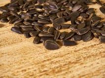 Разбрасывать семян Стоковые Фото