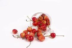 Разбросанные вишни на белой предпосылке Стоковое Изображение RF