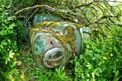 Развалина автомобиля перерастанного с заводами Стоковые Изображения RF