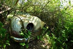 Развалина автомобиля перерастанного с заводами Стоковое Фото