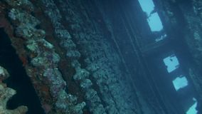 Развалина корабля на морском дне сток-видео