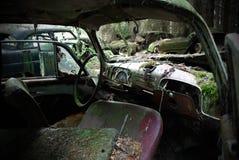 развалина Стоковая Фотография