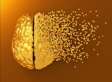 Развал золотого мозга цифров Стоковые Фото