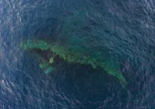 Развалина корабля в океане Стоковые Фотографии RF