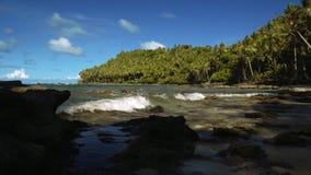 Развевайте на красивом тропическом пляже с белым песком, пальмами и некоторыми камнями сток-видео
