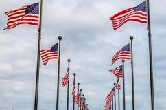 Развевать американских флагов Стоковое Фото