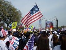 развевать протеста мола флага Стоковое Изображение