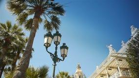 Развевая пальмы и казино на Монако, Cote d'Azur Франции акции видеоматериалы
