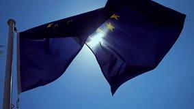 Развевая флаг Европейского союза в ветре с голубым небом видеоматериал