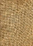 развертка джута Стоковые Фотографии RF
