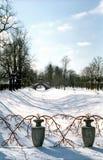 разветвляет красная зима ваз Стоковые Фотографии RF