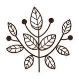 Разветвьте с листьями Стоковые Фотографии RF