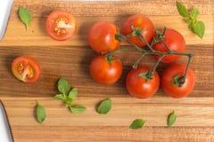 разветвляют томаты вишни Стоковое Изображение