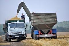 Разгржать зерно от бункера-reloader на тележке Стоковые Фотографии RF