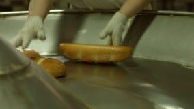 Разгржать хлеба от транспортера видеоматериал