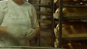 Разгржать хлеба от транспортера сток-видео