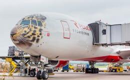 Разгружают пассажира самолет Боинг 777-300 авиакомпаний Rossiya как раз приземлился, груз от воздушных судн Фюзеляж покрашен как  стоковое изображение