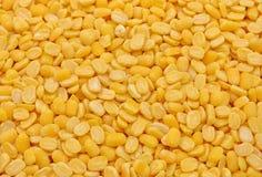 Разделенные семена ИМПа ульс moong Стоковое Фото