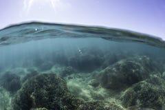 Разделенный взгляд рифа, залива Hervey, QLD стоковое фото rf