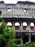 Разделите взгляд Colosseum в Риме, Италии Стоковое фото RF