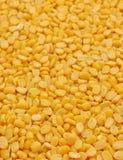 Разделите семена ИМПа ульс moong Стоковое Изображение
