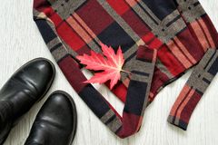 Разделите checkered верхнюю часть с рукавами, черными ботинками изолированный клен листьев модная концепция Стоковое Изображение