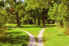 Разделять тропу в парке Ландшафт ЛЕТА стоковые изображения rf