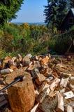 Разделяя древесина Стоковое Изображение